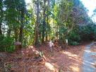 森の遺跡入り口(34.9205643,1…