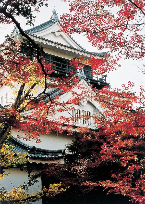 秋の岡崎城天守
