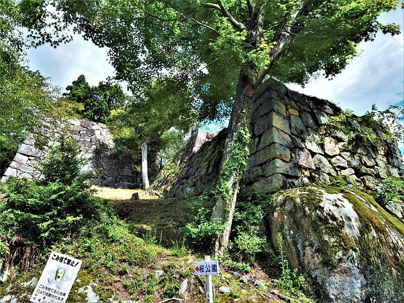 石垣(大矢倉)
