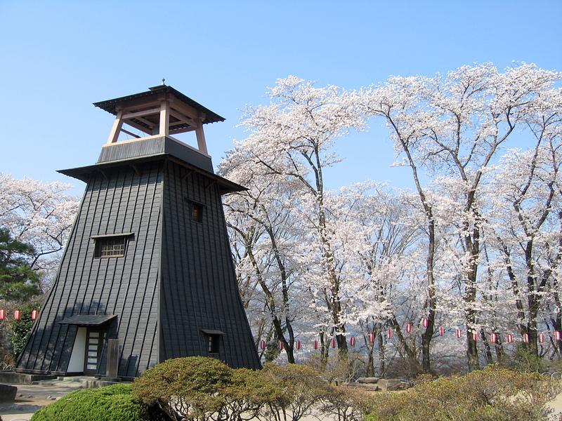 鐘楼と桜[沼田城]