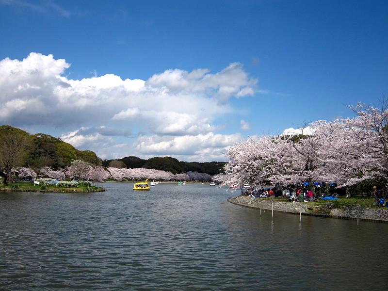 剛ノ池(春)