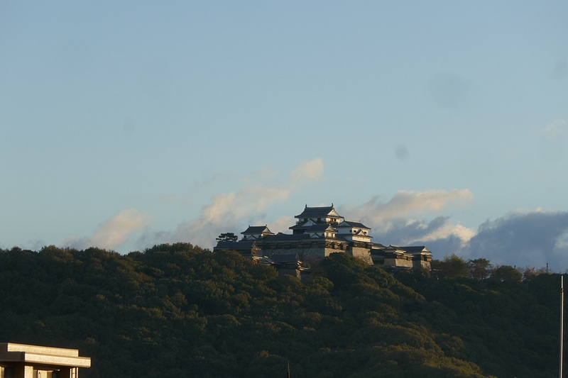 朝の松山城
