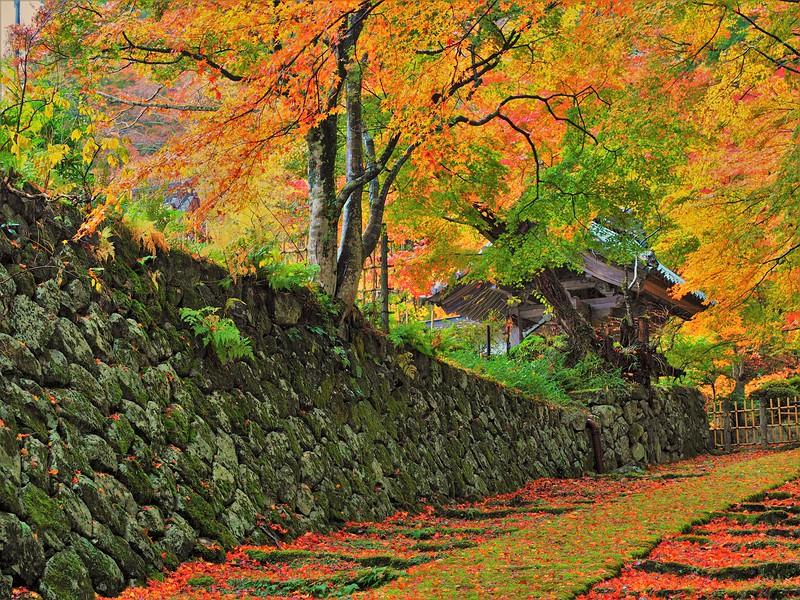 石垣と山門