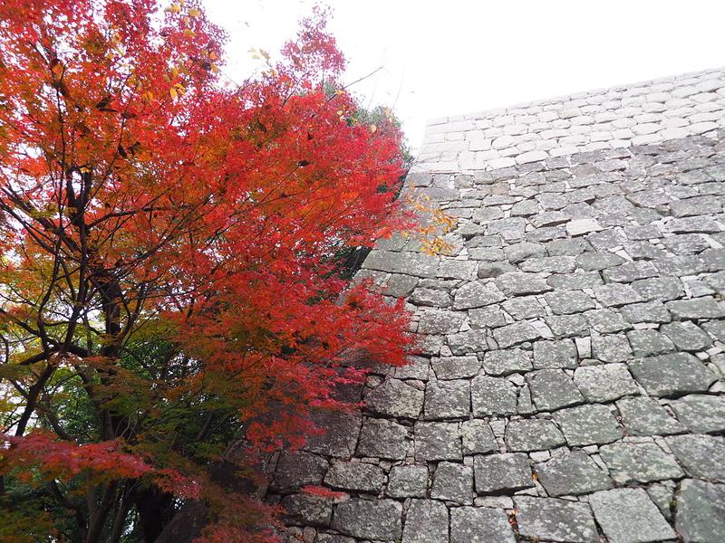 高石垣と紅葉
