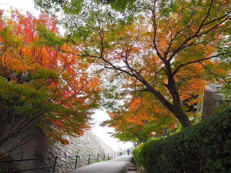 晩秋の登城路