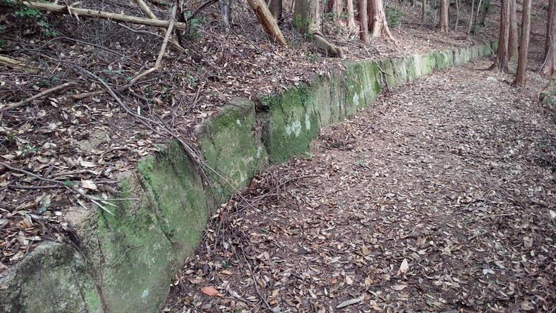 鹿毛馬神籠石 列石
