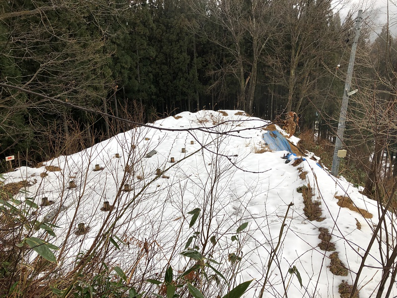 雪に覆われた二の郭跡