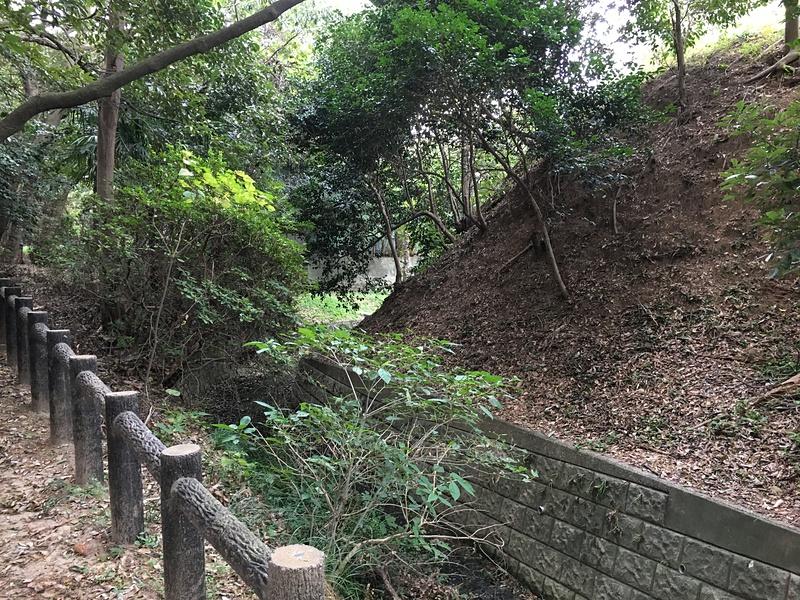 本丸北西側の土塁と堀跡
