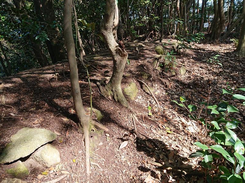 石積の残る土塁(旧主郭曲輪E)