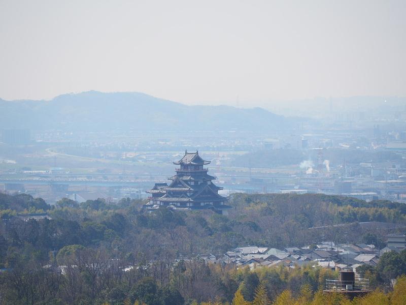 大岩展望所から見る城址