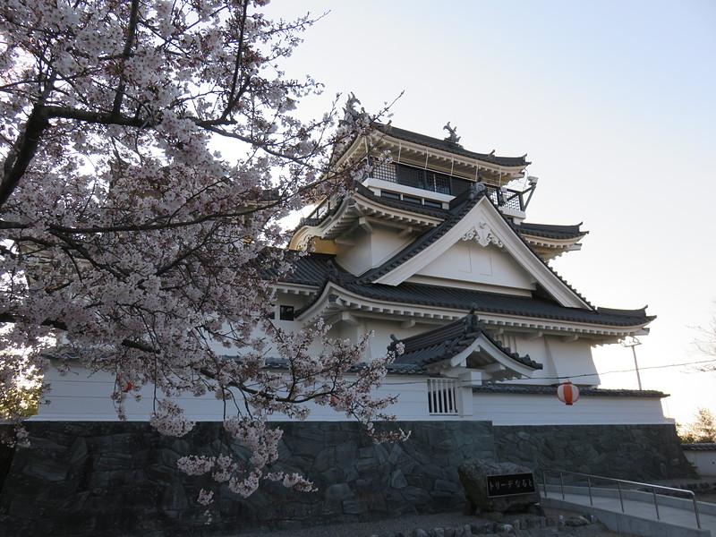 桜と摸擬天守