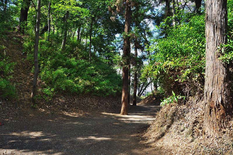 新曲輪と鍛冶曲輪を隔てる堀底から水堀跡の菖蒲池方向