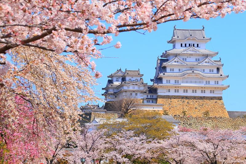桜色、重なりて
