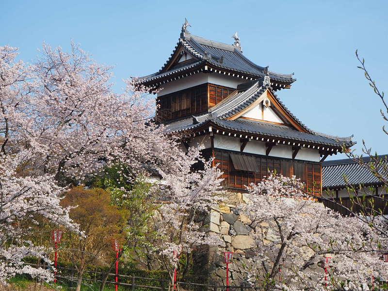 桜と追手向櫓