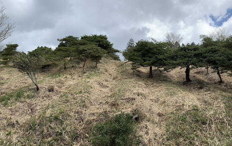 畝状竪堀群(下から)