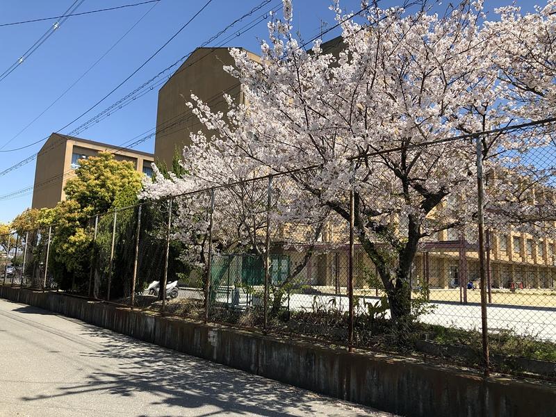 本丸跡(松原市立第七中学校)
