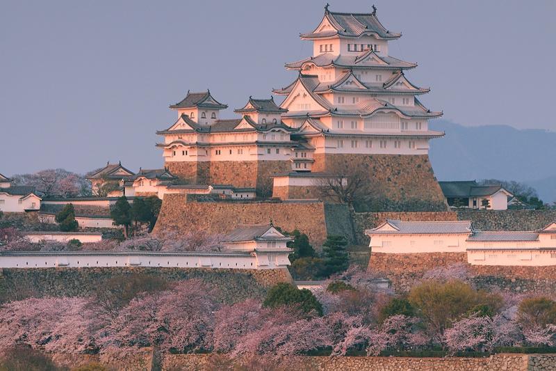 南西からの姫路城と桜の遠景