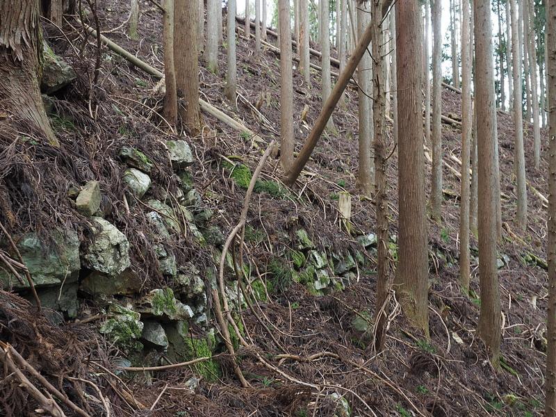 石垣(二ノ丸北斜面)