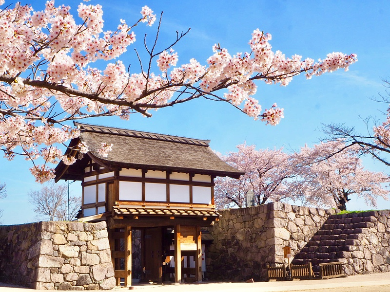 桜と北不明門