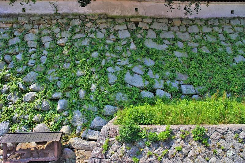 本丸石垣(北側)黒田(右側)・細川(左側)時代の境目