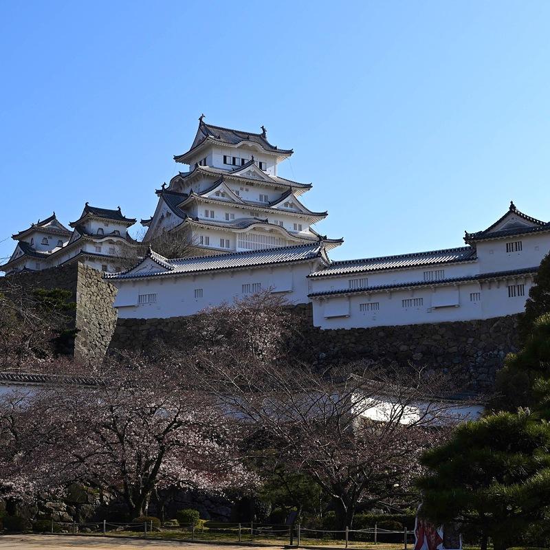 姫路城入城口からの天守