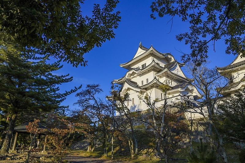 伊賀上野城 秋景色
