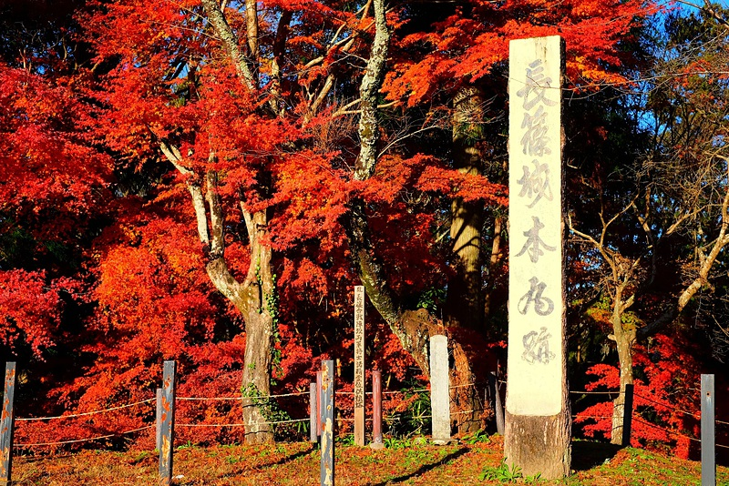 長篠城の紅葉[長篠城]