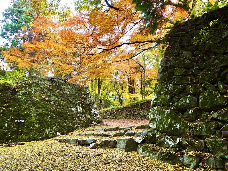 秋の大手門跡