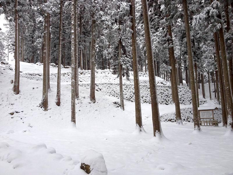 積雪した調度丸跡