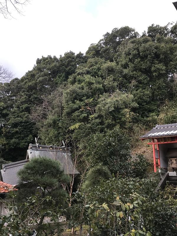 満願寺城の城址を見上げる
