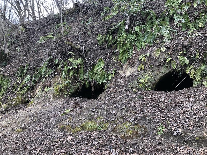 主郭に至る途上にある城が平横穴古墳群