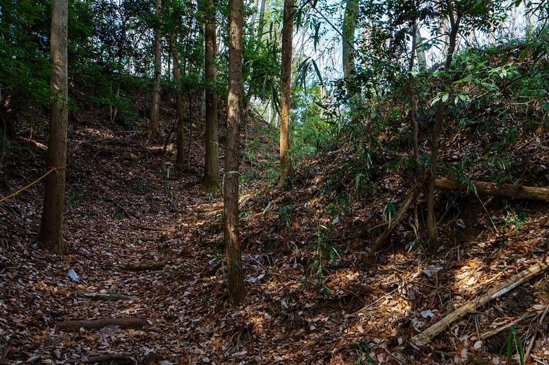 北の丸から登城口に落ちる竪堀の屈曲部