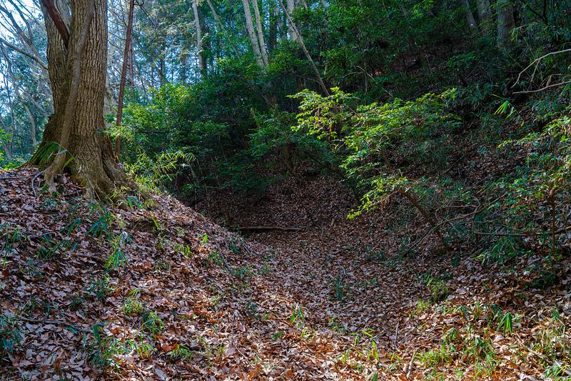 郭Ⅳの下の横堀と土塁、郭Ⅰの切岸