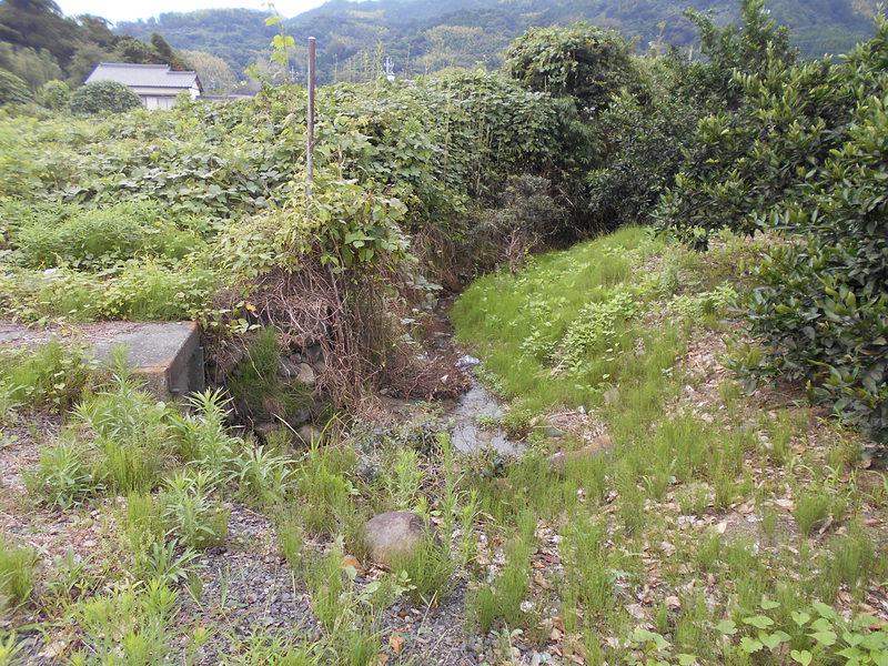 屋敷跡南側堀