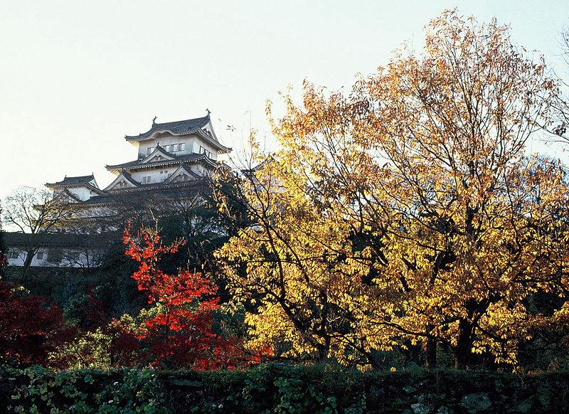 改修前の姫路城と紅葉