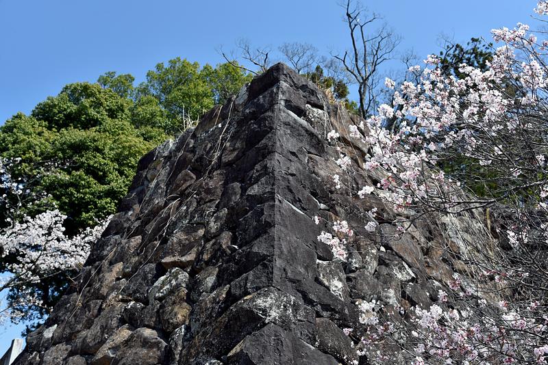 武田神社正面石垣