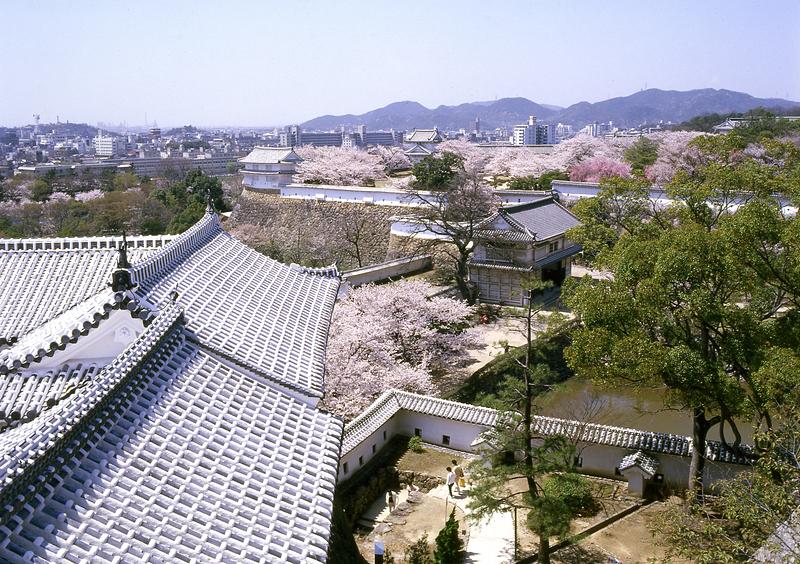 菱の門付近の眺望