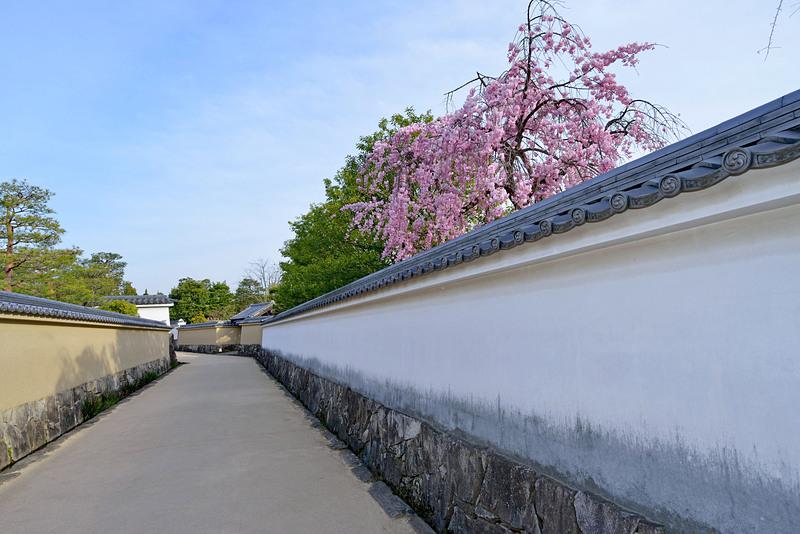 白壁の風景(好古園)