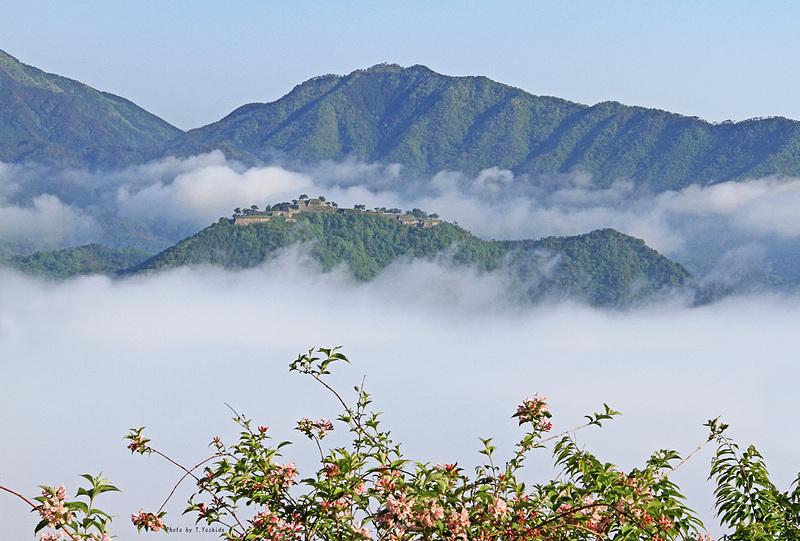 雲海に浮かび上がる竹田城(初夏)
