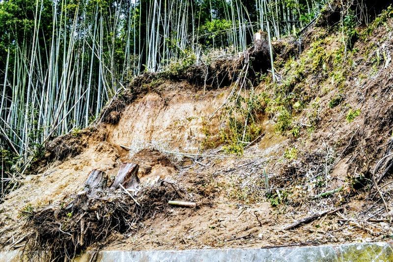 登城道途中、今なお残る地震での崩落