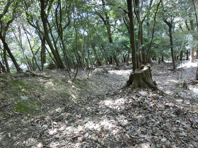 土塁跡付近の竪堀