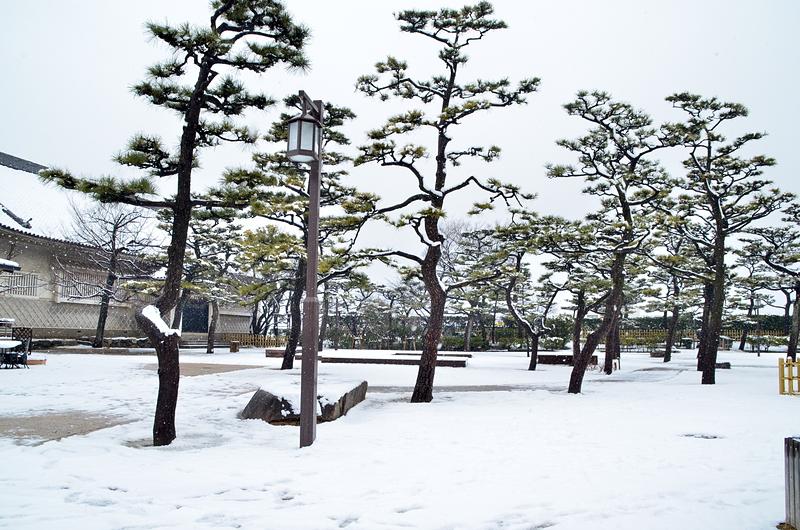 雪の二の丸広場(2014年)