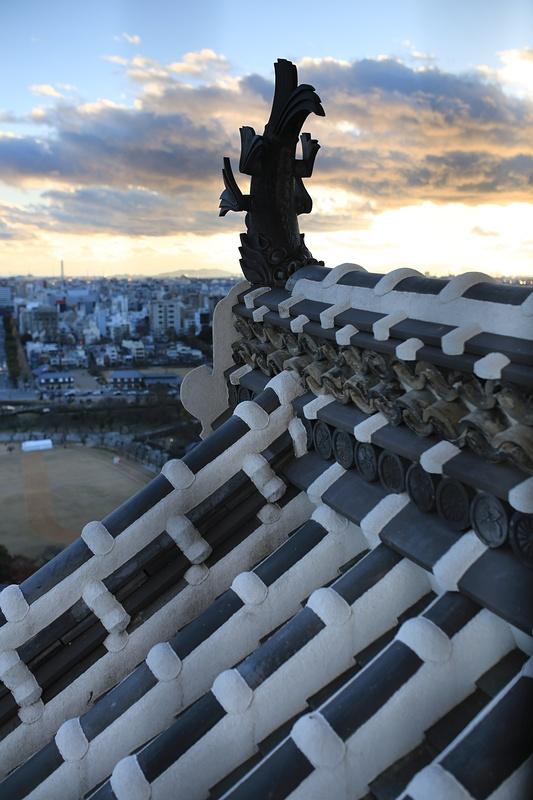 大天守最上階から見た鯱瓦