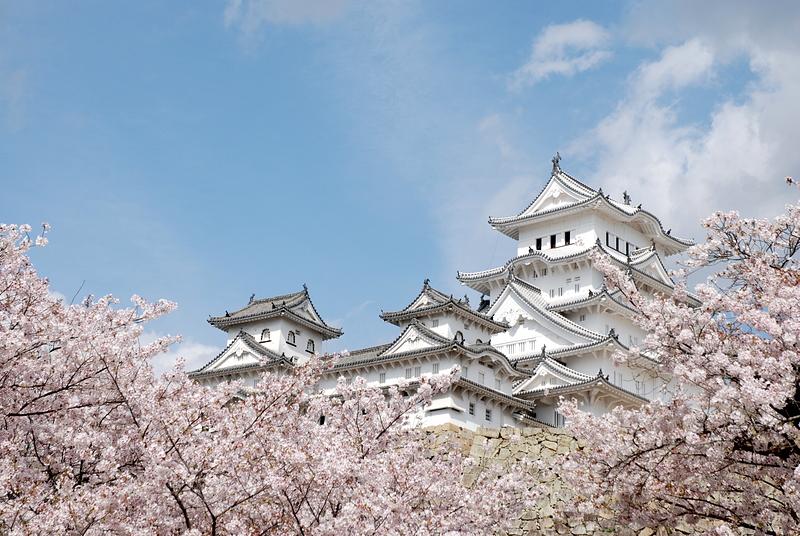 桜の海から顔を出す[姫路城]