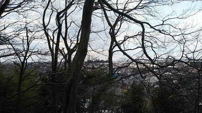 朝日山公園展望台から