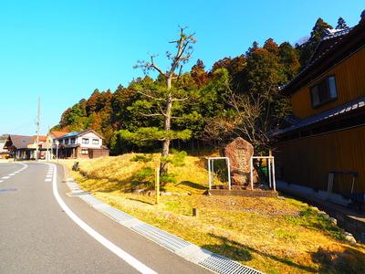 尾根道への入り口① (34.8399230,136.3353696)