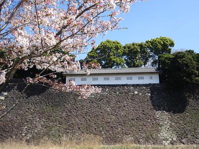 富士見多聞櫓(2018春)