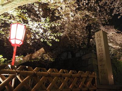 恩賜元離宮名古屋城の石碑と桜
