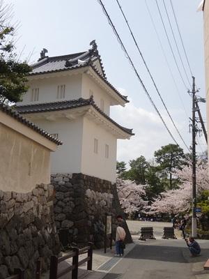 乾櫓と常葉神社の桜