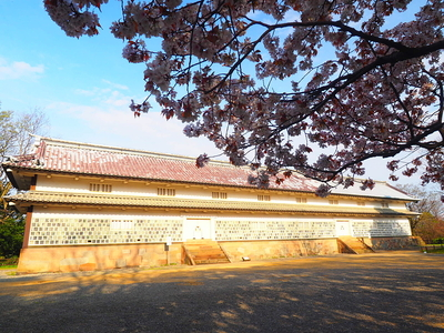 三十間長屋と葉桜